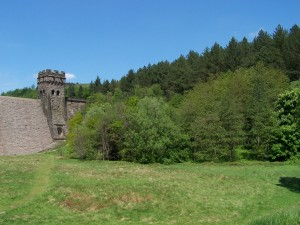 Derwent Valley Walk 070613 (10)