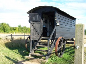 Manor Farm 150813 (35)