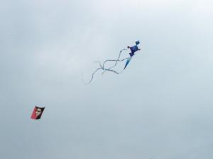 Portsmouth Kite Festival 240813 (46)