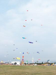 Portsmouth Kite Festival 240813 (12)