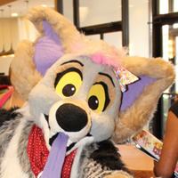 Yuchi Coyote