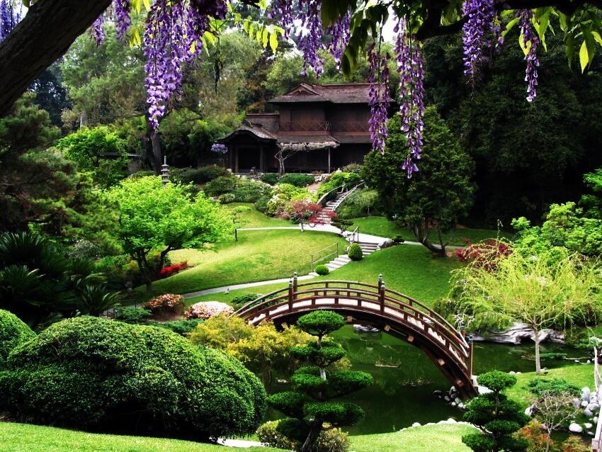 5-San-Francisco-Botanical-Garden-San-Francisco-Step-Into-the-Best-Botanical-Gardens-in-the-United-States-via-peachgarden.org_