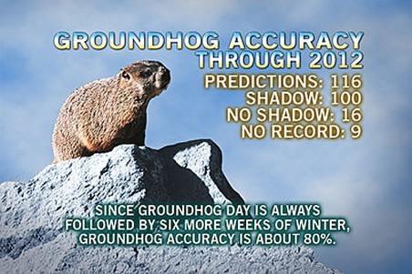accu-groundhog