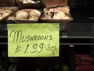mushroons