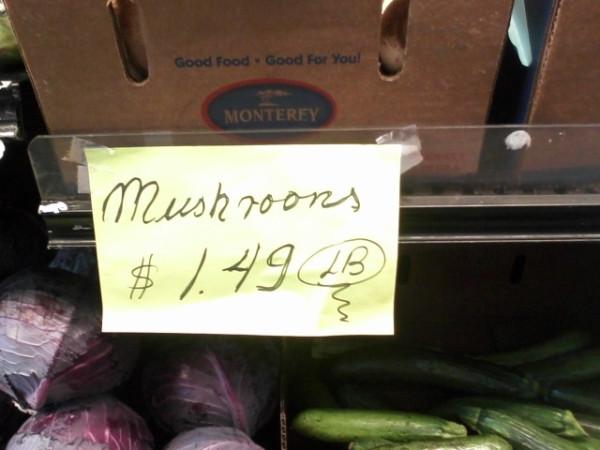 mushroons2