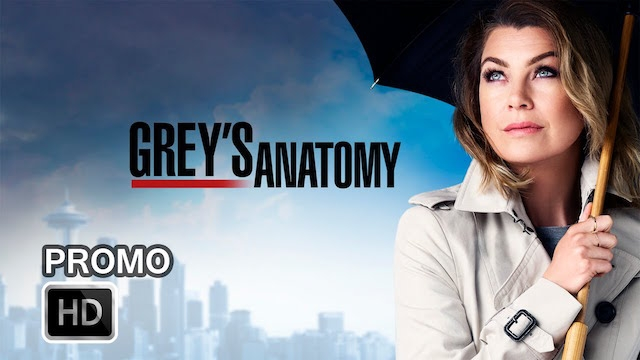 greys-anatomy-season-13-release-date-rumors-news-updates-couples-in-season-13-battle-issues-of-love-and-hate.jpg