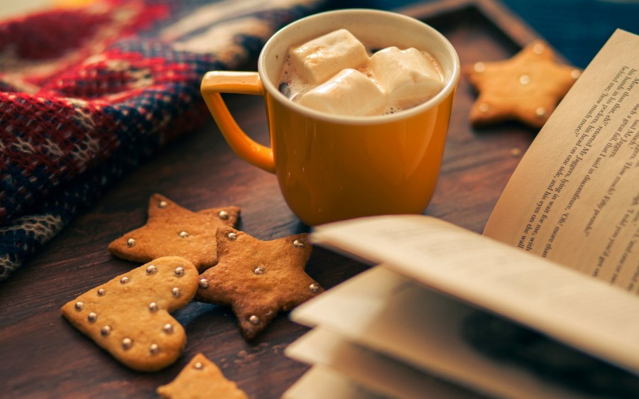 pechene-zimnie-otdyx-zvezda-chashka-eda-serdce-kakao-kniga-prazdnik-zima.jpg