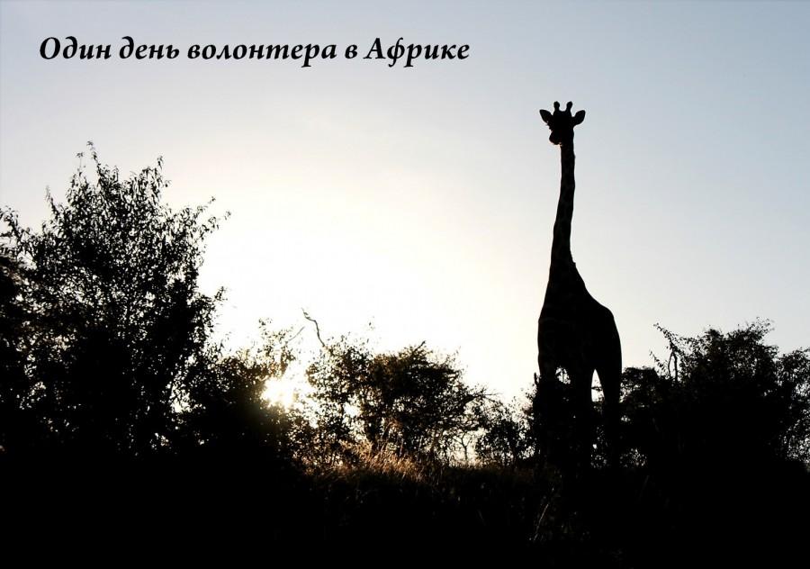 Один день волонтера в Африке