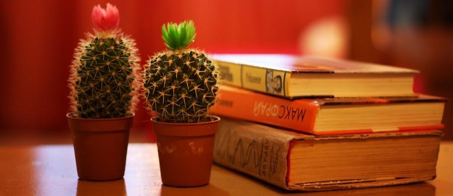 Книжные истории