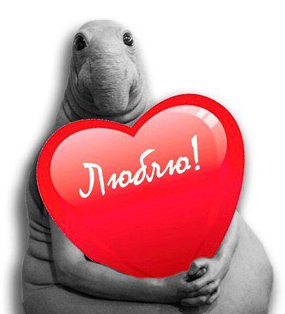 Валентин уж не тот!))))