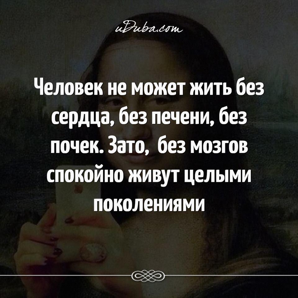 Без мозгов, без совести и без нравственности..
