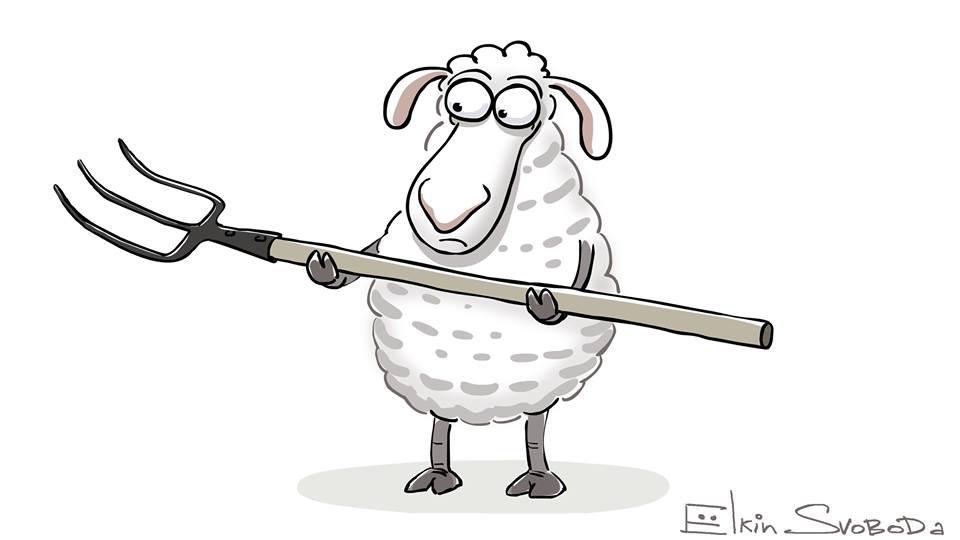 Ёлкин про Ашота с овцами оперативно