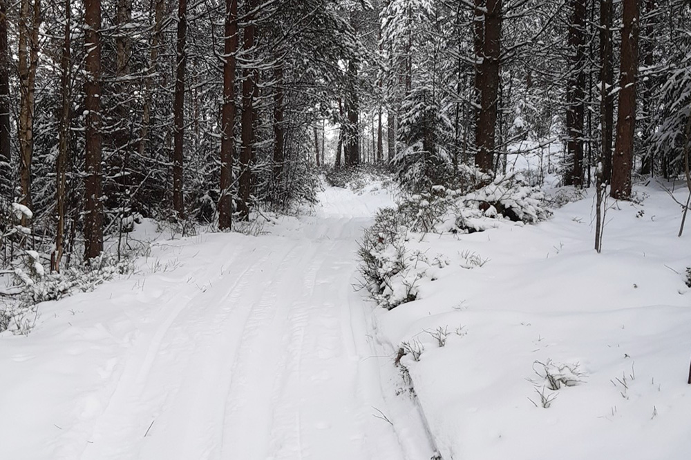 diary-pensionerka-finland-photo30.oukbiknd2wxi