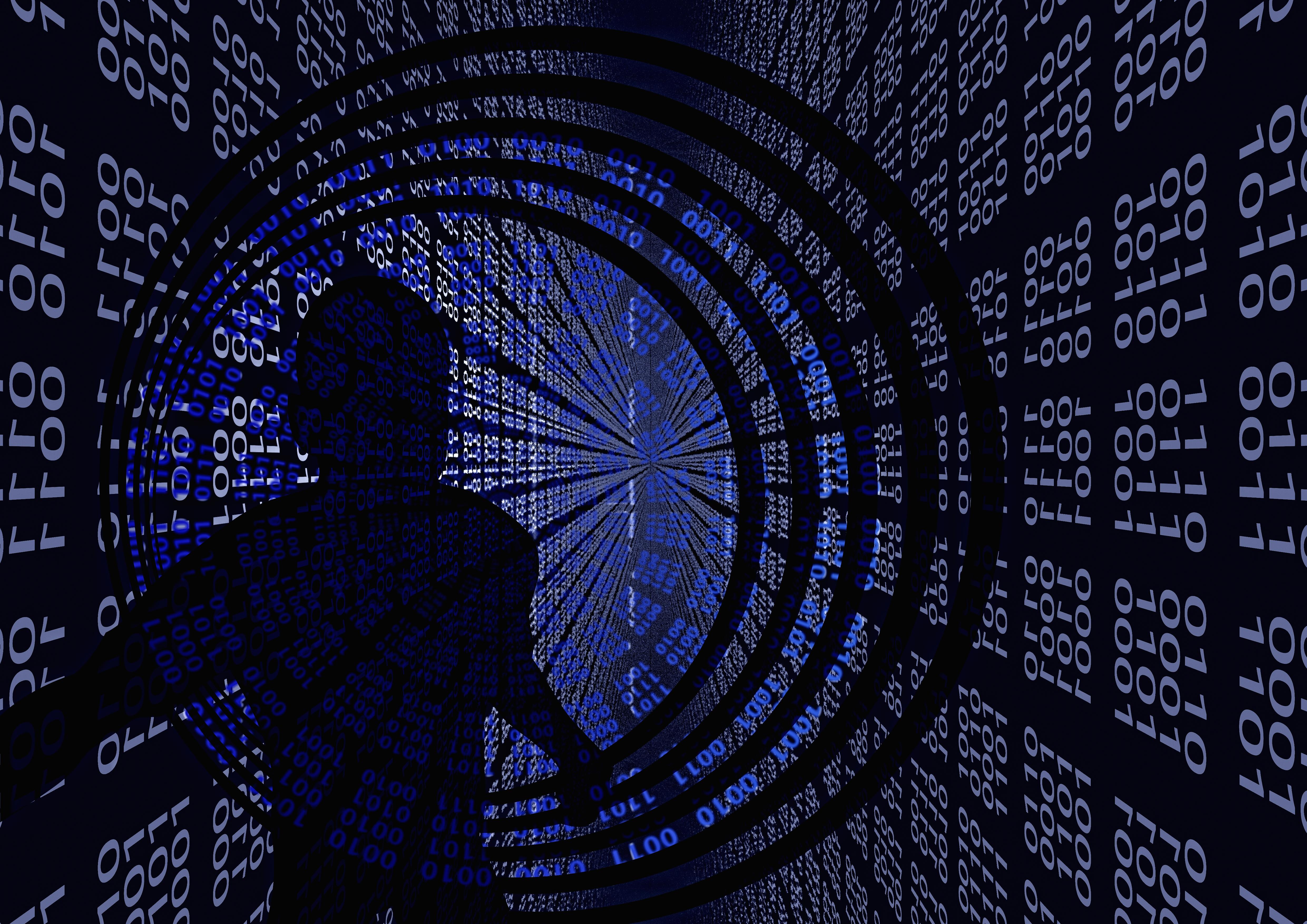 binary_null_digital_silhouette_3