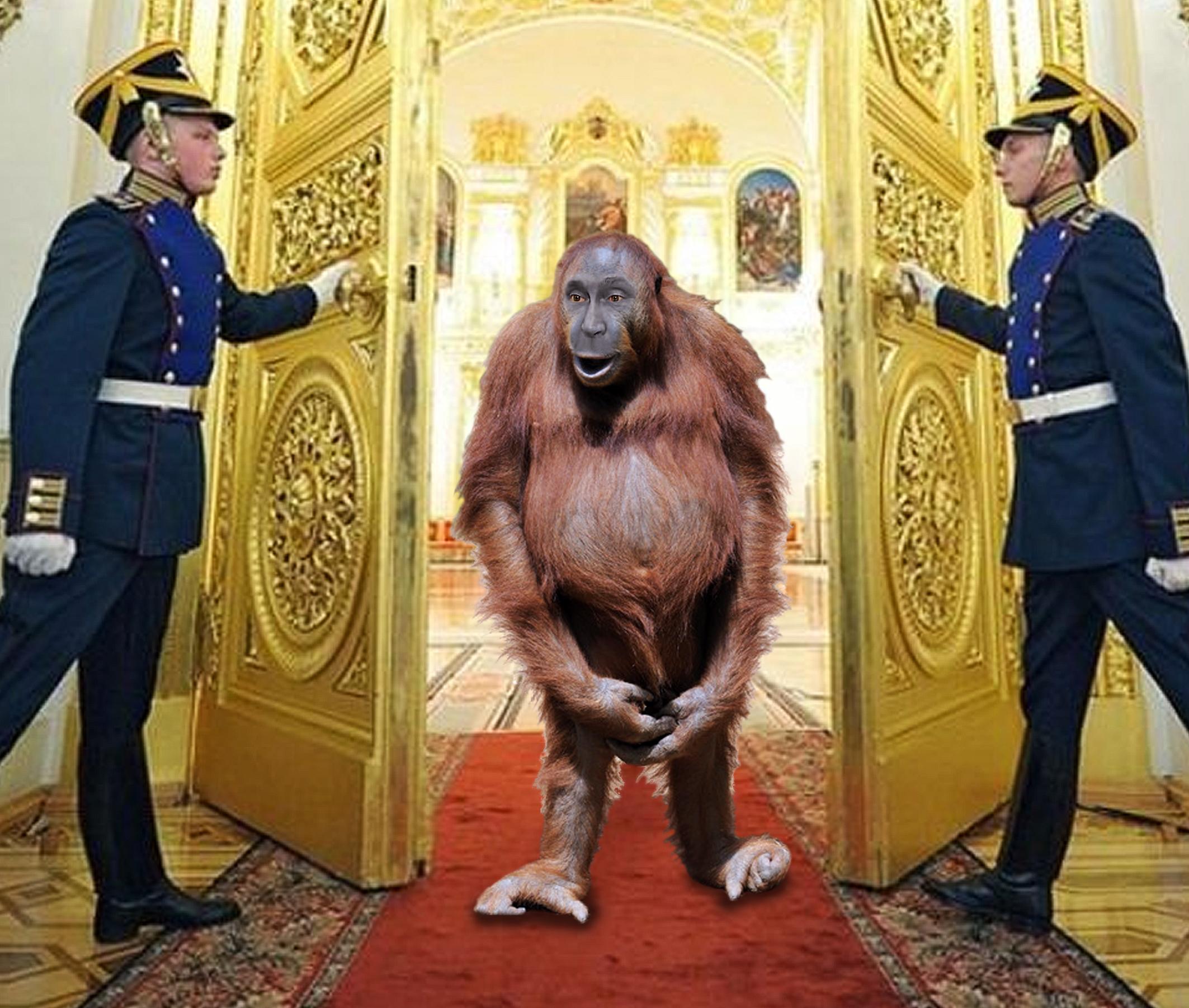 не хотел обезьянничать