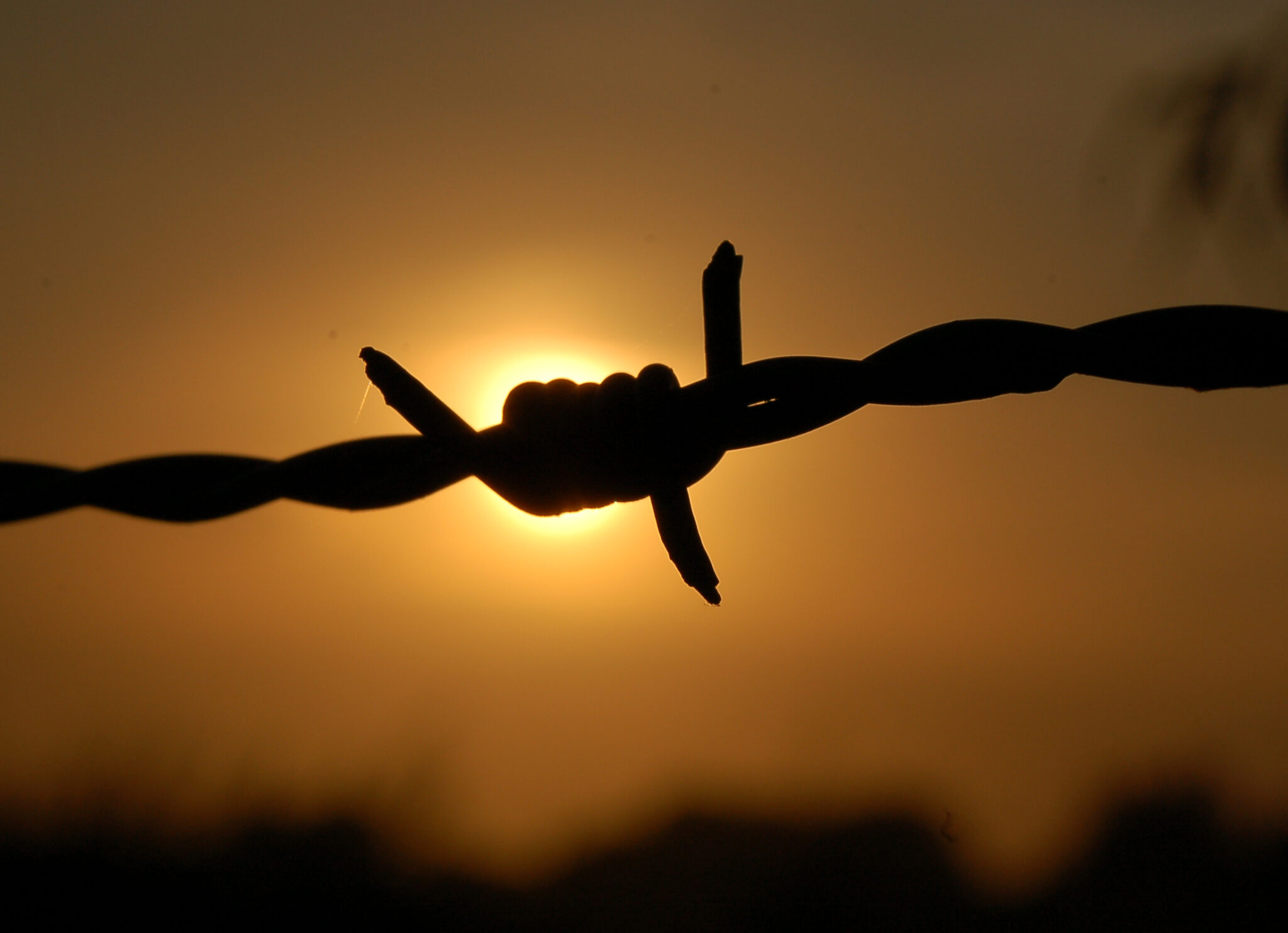 sunset-behind-a-barbed-wire-1216626-2048x1484