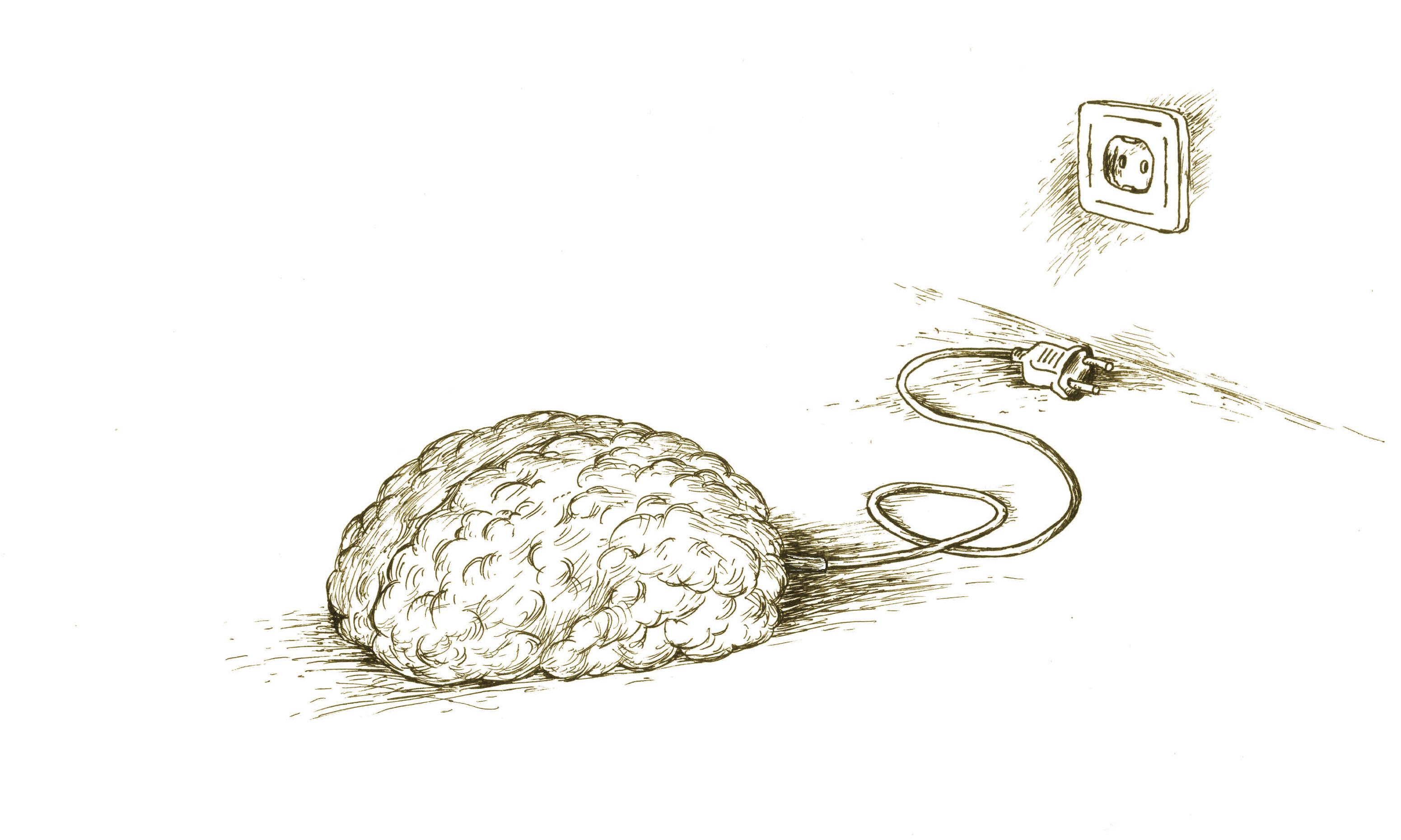 картинка пока мозг выражения, основном