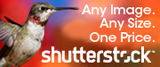 Фотостоки (микростоки) для начинающих. Stutterstock. Photo stocks (microstock) for beginners