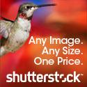фотосток Shutterstock.