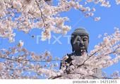 Фотостоки, микростоки. Темы (тренды) мая. Будда, просветление (Buddha, enlightenment)