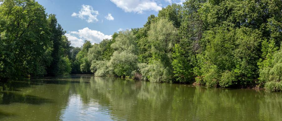 pond, Vorobyovy Gory, Sparrow hills, Воробьёвы горы, пруд