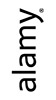 Фотостоки для начинающих. Alamy. Photo stocks for beginners