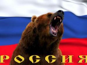 медведь шатун.jpg