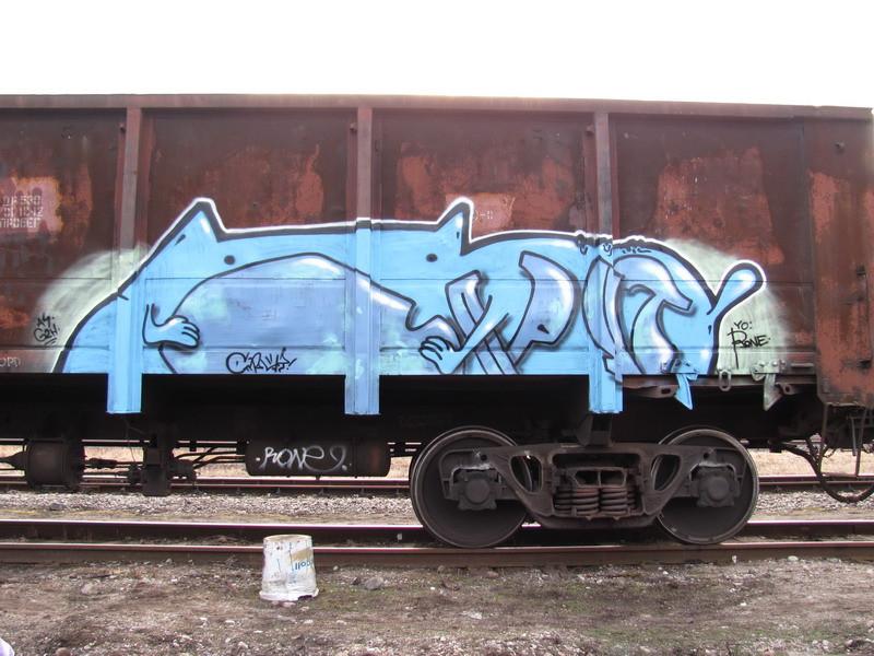 255spr-fr8