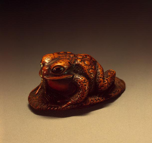Лягушка на сандалии