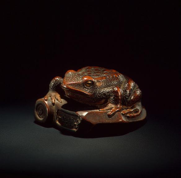 Лягушка на сломанной черепице