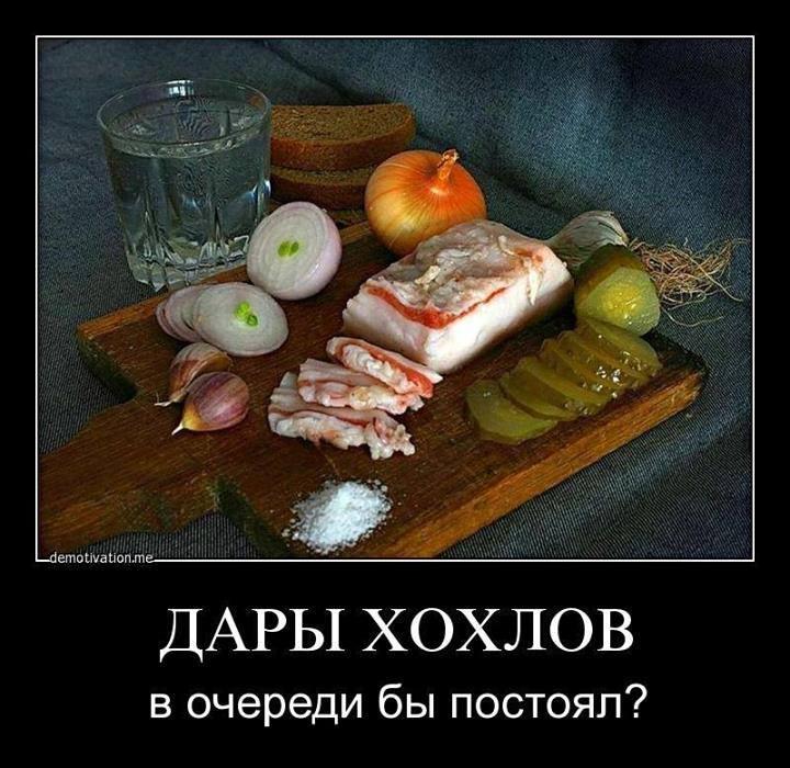 1546301_10152136021737692_725271285_n