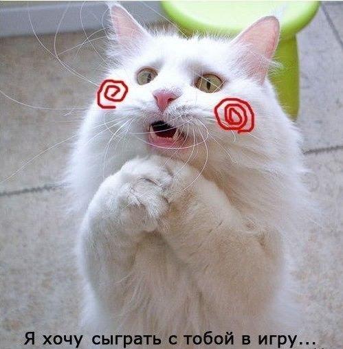 WDlFbYeWxVA