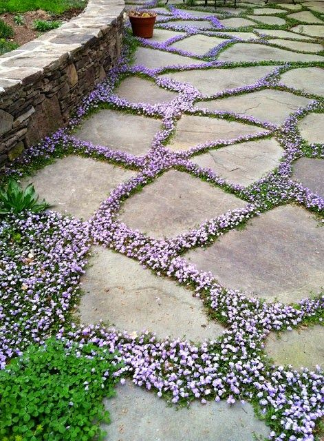 natural-and-creative-garden-paths-4
