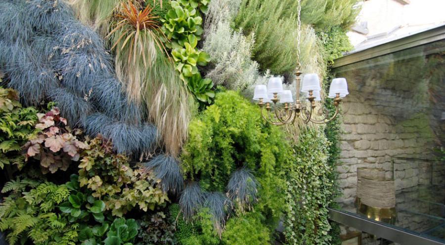 Apartment-Paris-France-Courtyard-Plants