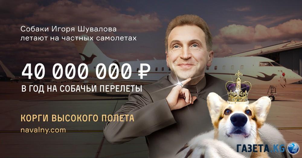 Картинки по запросу Медведев ШуваловС  ЕВРЕИ