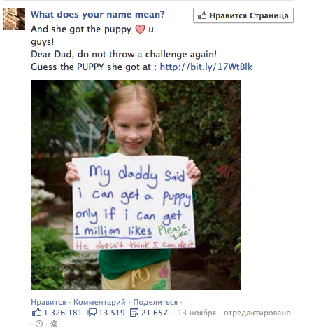 daddy I wanna puppy