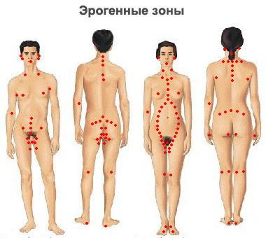 g зона точка у женщин: