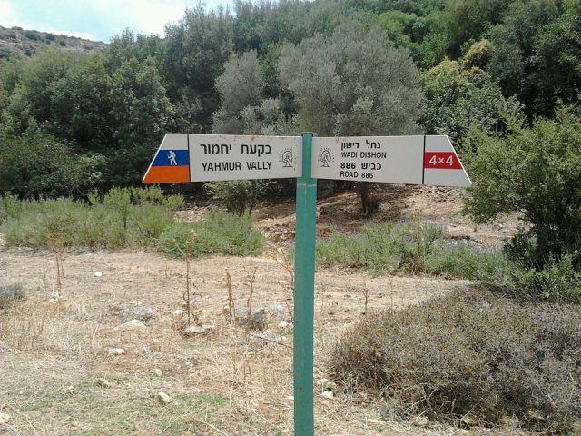 Nahal Dishon