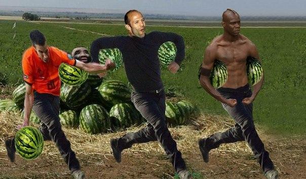 сезон арбузов арбуз фото волгоградская область
