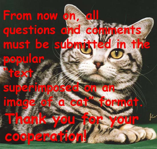 From now on, all questions and comments must be submitted in the popular text superimposed on an image of a cat format. Thank you for your cooperation!