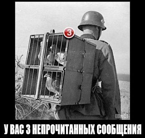 У польской границы наладили подделку документов, - Госпогранслужба - Цензор.НЕТ 1603