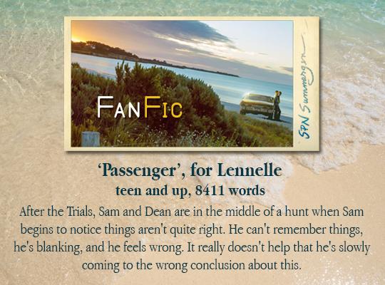 banner for Passenger, for Lennelle
