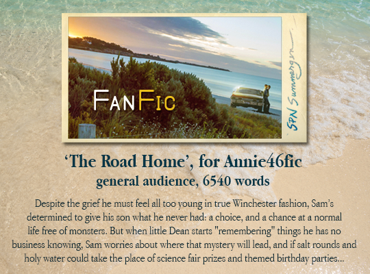 banner for 'The Road Home' for Annie46
