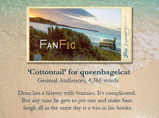 banner for 'Cottontail' for QueenBagelcat
