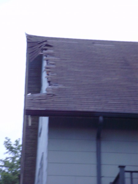 "David""s roof after the tree damaged it"