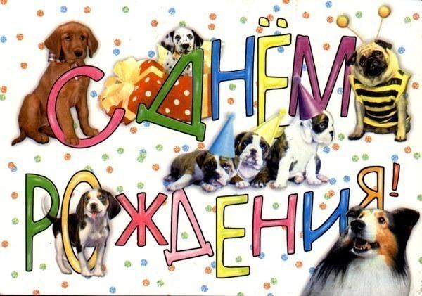 картинки с собаками с днем рождения