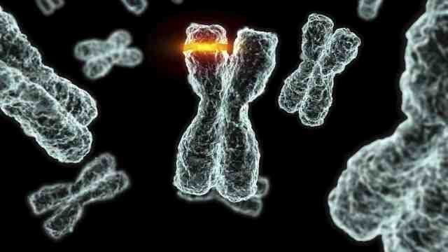 Mutations2