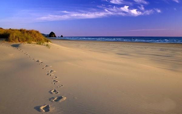 sandy-beach-wallpaper-1680x1050-285