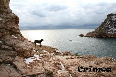 crim2