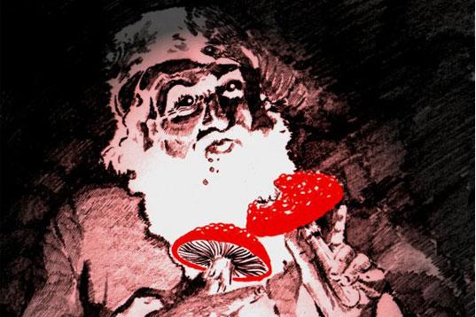 Мухомор Санта 3